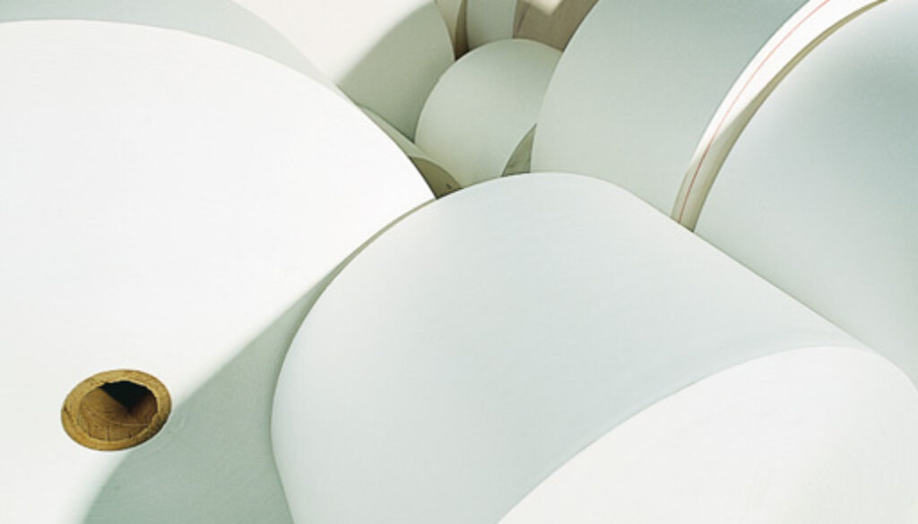 Business forms paper reels